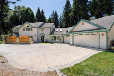 2400 Mayflower Road, Pollock Pines, CA 95726 - #: 19061329