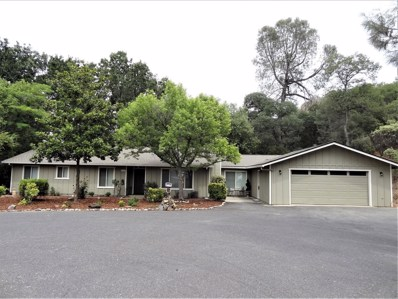 11233 Coopers Court, Sonora, CA 95370 - #: 19061810