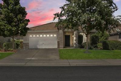 807 Michael Point Court, El Dorado Hills, CA 95762 - #: 19062406