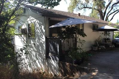 790 Spring Street, Placerville, CA 95667 - #: 19063063