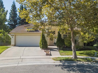 9311 Winningham Ct, Elk Grove, CA 95758 - #: 19063616