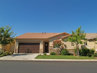 2234 Via Vita, Oakdale, CA 95361 - #: 19064904