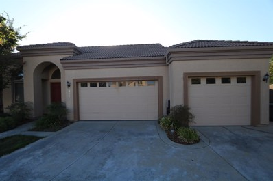 8582 Guildhall Court, Elk Grove, CA 95624 - #: 19066944