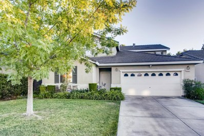 2932 Cinnamon Teal Circle, Elk Grove, CA 95757 - #: 19067075