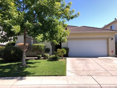 3213 Tree Swallow Circle, Elk Grove, CA 95757 - #: 19069552
