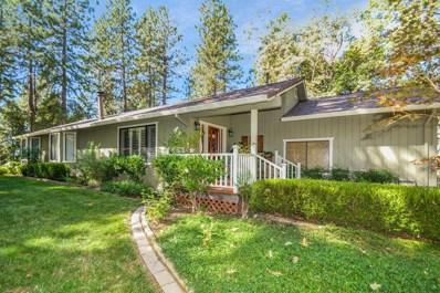 23201 Hidden Lane, Pioneer, CA 95666 - #: 19069834