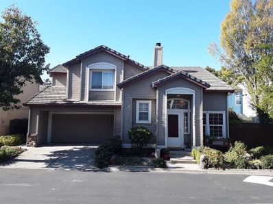 9542 Sunlight Lane, Elk Grove, CA 95758 - #: 19075365