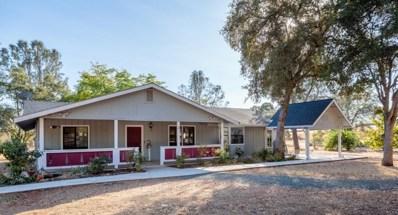 10261 Granite Dell Road, Coulterville, CA 95311 - #: 19075525