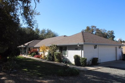 2088 Blake Ln, Valley Springs, CA 95252 - MLS#: 19077184