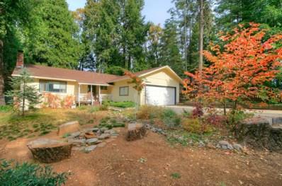6517 Dobson Way, Pollock Pines, CA 95726 - #: 19077544