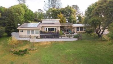 5505 Meesha Lane, Placerville, CA 95667 - #: 19078111