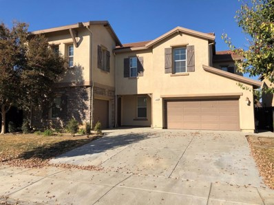 1209 Imperial Lily Drive, Patterson, CA 95363 - MLS#: 19078129