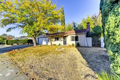 9311 Polhemus Drive, Elk Grove, CA 95624 - #: 19078459
