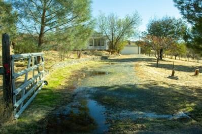 2245 Pepito Drive, La Grange, CA 95329 - #: 19079068