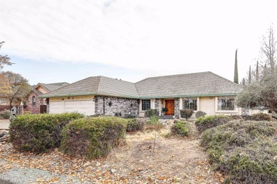 741 Blue Herron Court, Valley Springs, CA 95252 - MLS#: 19079194