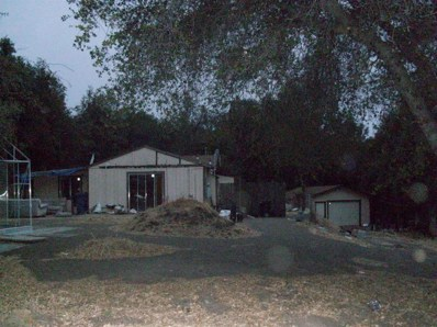 3258 W Grillo Dr, Coulterville, CA 95311 - #: 19079938