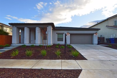 1240 Fawn Lily Drive, Patterson, CA 95363 - MLS#: 19080957