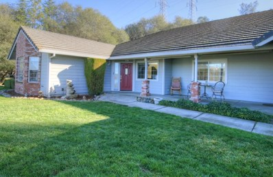 3630 Conestoga Lane, Placerville, CA 95667 - #: 19081358