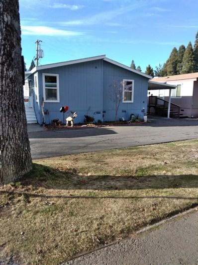 2933 Forebay Road UNIT 41, Pollock Pines, CA 95726 - #: 20001088