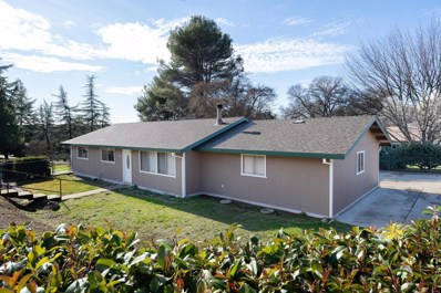 2310 Ponderosa Road, Rescue, CA 95672 - #: 20002167