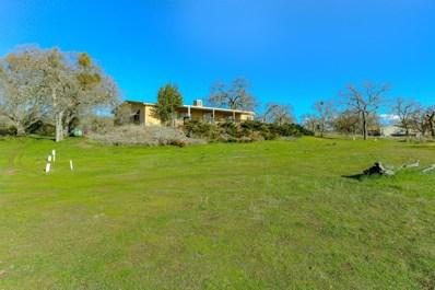 2336 Pepito Drive, La Grange, CA 95329 - #: 20008016