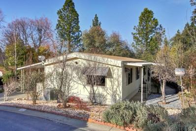 4420 Pleasant Valley Road UNIT 167, Diamond Springs, CA 95619 - #: 20009964