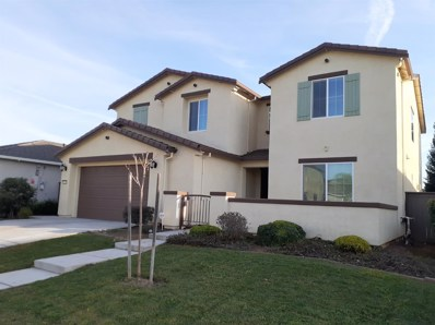 9620 Ronaldo Falls Way, Elk Grove, CA 95624 - #: 20009982