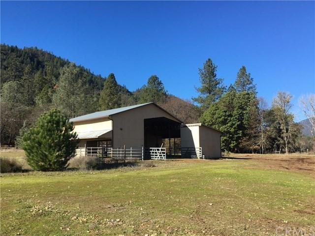 13306  Elk Mountain
