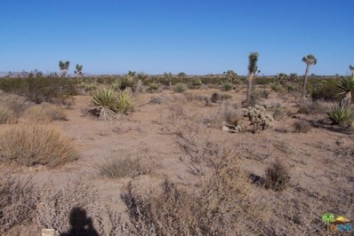 2107 Old Woman Springs Road, Yucca Valley, CA 92284 - MLS#: 17294562PS
