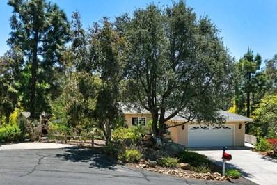 611 Hilbert Drive, Fallbrook, CA 92028 - MLS#: 180024137