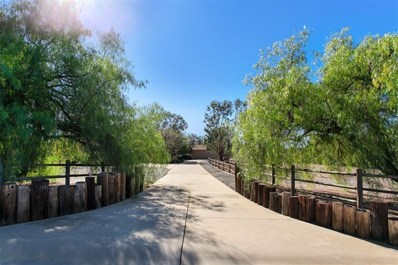 14255 CANE RD, Valley Center, CA 92082 - MLS#: 180062413