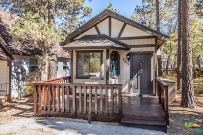 223 Los Angeles Avenue, Big Bear, CA 92314 - MLS#: 18405852PS