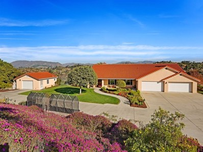 290 Patton Oak Road, Fallbrook, CA 92028 - MLS#: 190000540