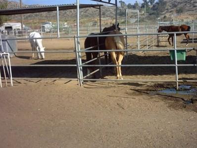 9793 Dunbar Lane, El Cajon, CA 92021 - #: 190021179