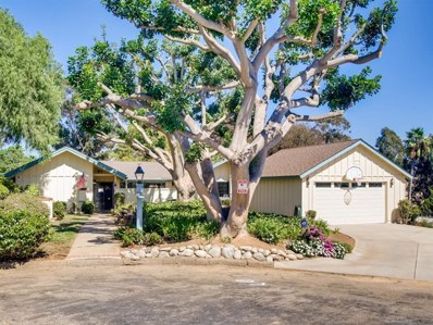 1026 Farrand Ct, Fallbrook, CA 92028 - MLS#: 190051079