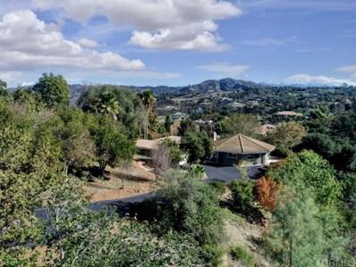 1351 Knoll Park Lane, Fallbrook, CA 92028 - MLS#: 190066029