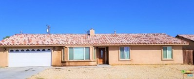 2373 Shore Hawk Avenue, Thermal, CA 92274 - MLS#: 19446318PS