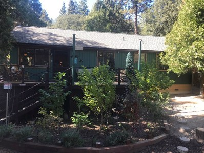 25631 Big Pine Street, Idyllwild, CA 92549 - MLS#: 19508824PS