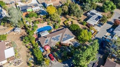 2539 Gum Tree Ln, Fallbrook, CA 92028 - MLS#: 200054040