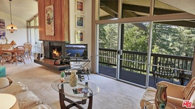 872 Sierra Vista-Unit 13 Drive, Twin Peaks, CA 92391 - MLS#: 20606006