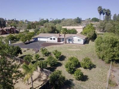 1106 S Stagecoach Ln., Fallbrook, CA 92028 - MLS#: 210005024