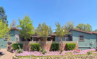 1162 Pine Drive, El Cajon, CA 92020 - MLS#: 210012551