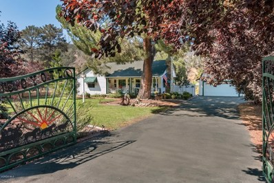 1105 Casitas Vista Road, Ventura, CA 93001 - MLS#: 218010639