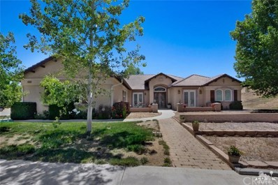 60266 Hop Patchspring Road, Mountain Center, CA 92561 - MLS#: 218016818DA