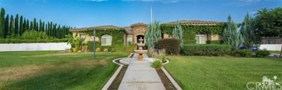 1263 Palomino Court, Hemet, CA 92543 - MLS#: 218033362DA