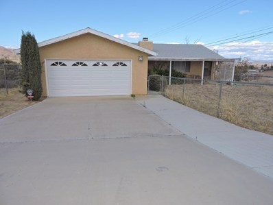 61740 Valley View Circle, Joshua Tree, CA 92252 - MLS#: 219040913PS