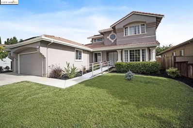 413 Madrone Pl, Brentwood, CA 94513 - MLS#: 40863330