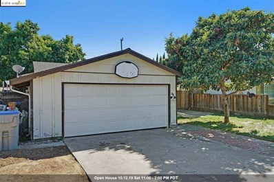 438 Nerdy Ave, San Jose, CA 95111 - MLS#: 40885492