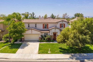 31743 Pepper Tree Street, Winchester, CA 92595 - MLS#: 512878