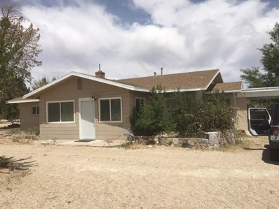 10225 Custer Avenue, Lucerne Valley, CA 92356 - MLS#: 521085